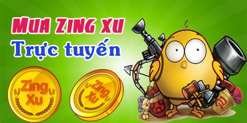 Đa Số Game Thủ Chưa Biết Cách Nạp Zing Xu Online